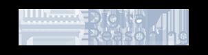 Logo Digital Reasoning